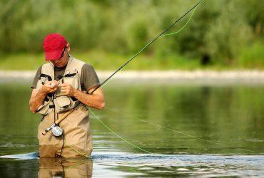 Решение поцеловать рыбу едва не стоило американцу жизни