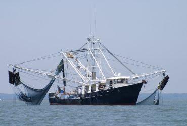 Испанская полиция изъяла 12 тонн гашиша с рыболовного судна