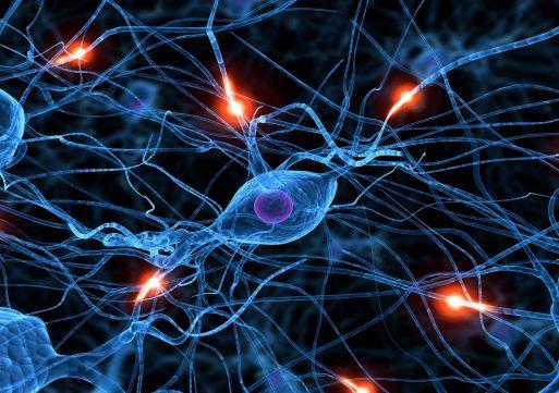 Эра технологий: в американских судах нейросети будут принимать решения