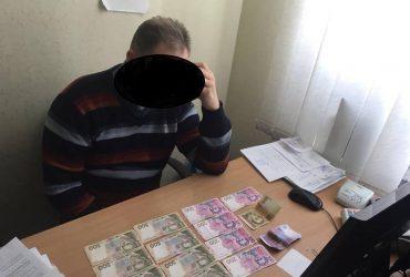 Коррупция в Одессе: ветврач за 5000 гривен выдавал лжесвидетельства
